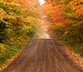 Enjoy Scenic Drives and the Fall Foliage of Charlottesville